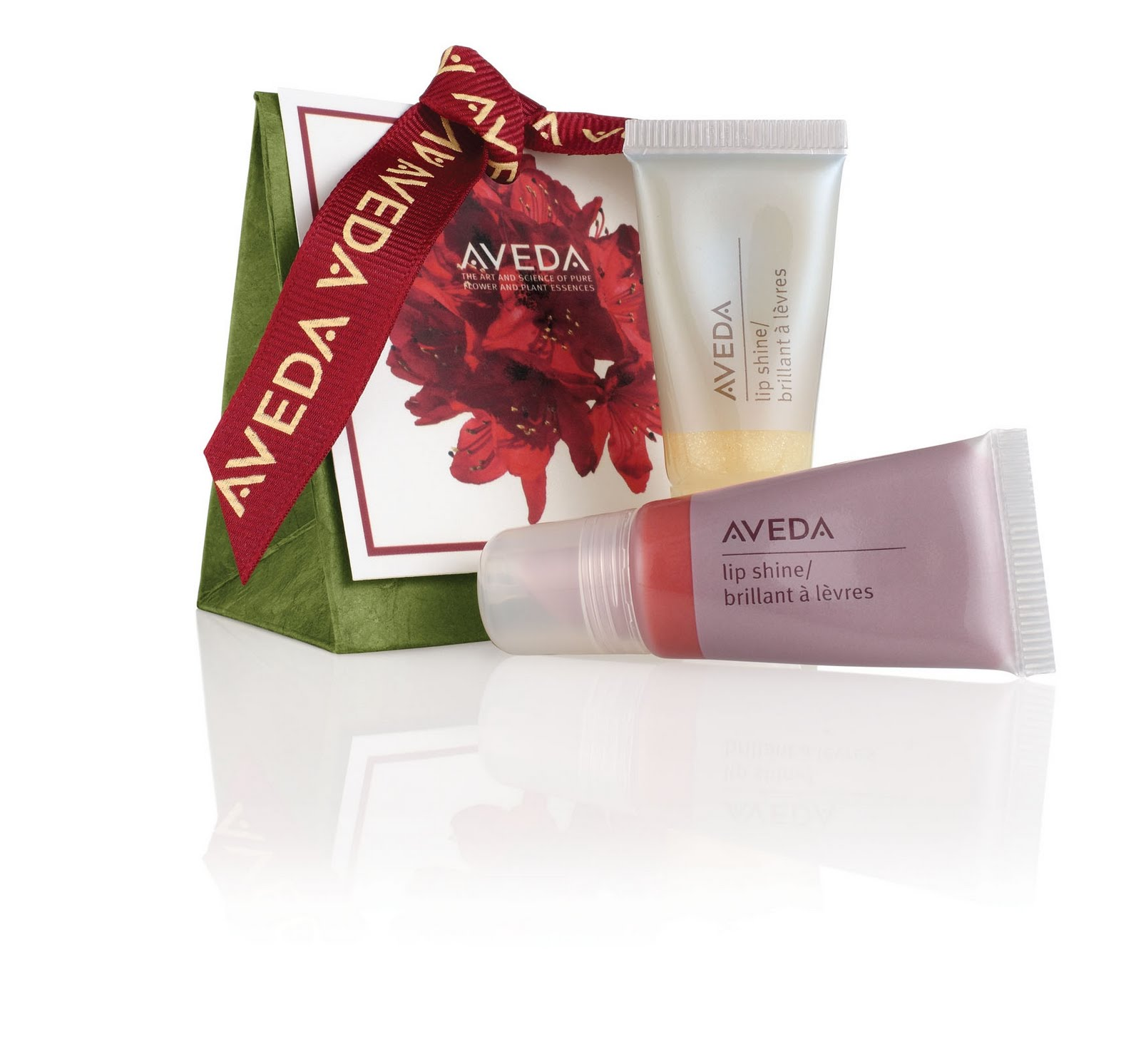 Aveda Holiday 2011 - The Gift That Let's Them Shine - AVEDA Institute Florida