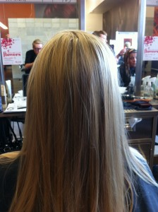 hair color and style at aveda institute tampa bay florida beauty school hair salon