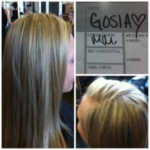 aveda institute tampa bay florida beauty school hair color style on guest
