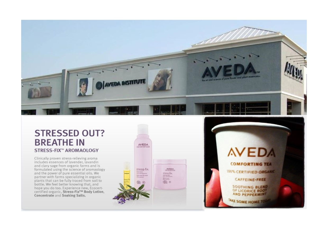 Aveda Hair Salon in Tallahassee Florida